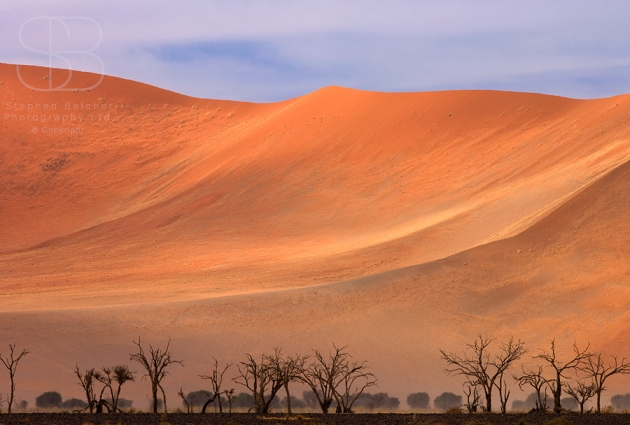 desert, horizontal,  cloudy sky, orange sand, bare trees, dry, Namib National Park, Namibia