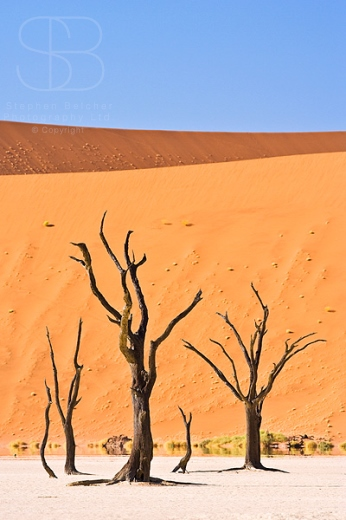 deserts    wild places  landscape photography    photography